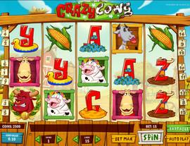 Machine à sous Crazy Cows de Play'n GO