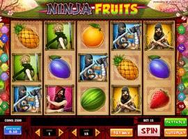 Machine à sous Ninja Fruits de Play'n GO