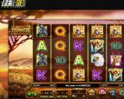 Machine à sous Stampede bientôt disponible dans les casinos Betsoft
