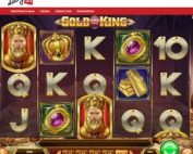 Machine a sous gratuite Gold King du logiciel Play'n Go